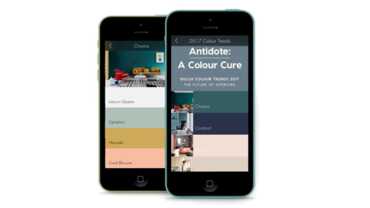 Dulux Colour App